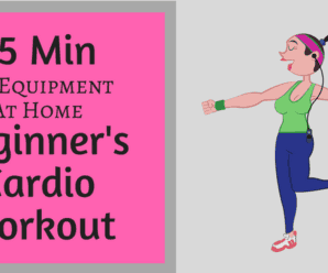 15 min no equipment beginner cardio workout